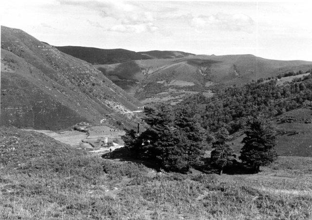 Los pinos, Garabandal.